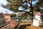 From 40 Eur Rooms and small apartments in center of Palanga
