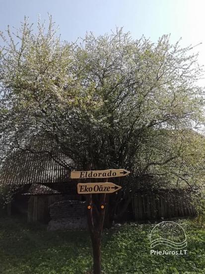 Eko Oāze - poilsio namų nuoma Liepojos rajone, Nicoje - 6