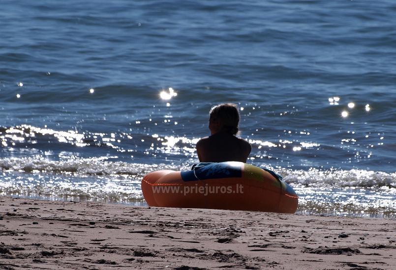 Brīvdienu mājas un Kempings HORTUS Tikai 20m no pludmales! - 41