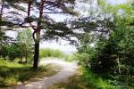 Mājīga māja pie jūras Latvijā, Jūrmalā - 11