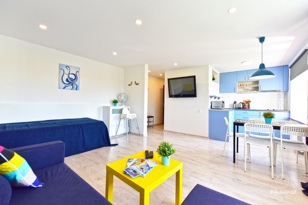 Naujai, moderniai įrengti 2 kambarių butai Petera ir Aleksandra gatvėse - 3