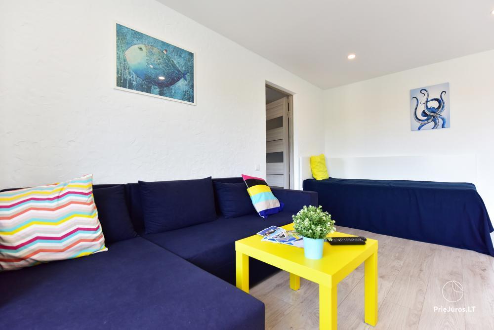 Naujai, moderniai įrengti 2 kambarių butai Petera ir Aleksandra gatvėse - 2