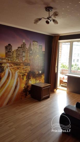 2 kambarių buto nuoma - 7