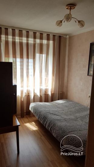 2 kambarių buto nuoma - 8