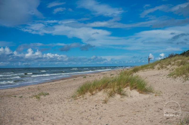 gamtosoaze.lt poilsis prie Baltijos jūros Papėje Latvijoje