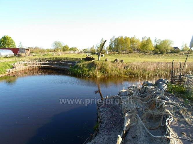 Poilsis Papėje - sodyba Judbidži prie jūros ir Papės ežero - 12