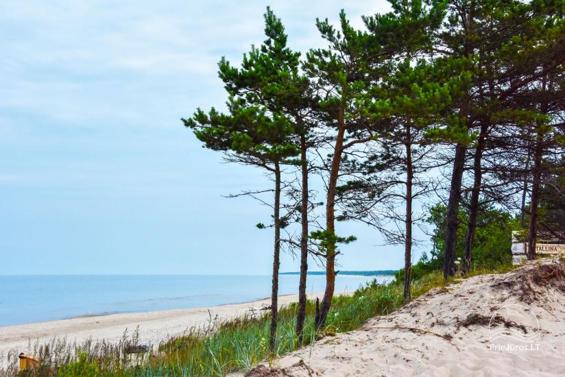 Holiday cottages  in Ventspils district Videnieki - 2