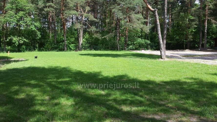 Camping and Restaurant Neptuns in Jurmala - 4