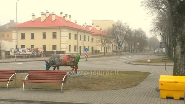 Dzintara apartamenti Ventspilī - 1