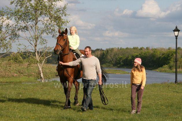 Riding horses Guest House - Camping Ventaskrasti
