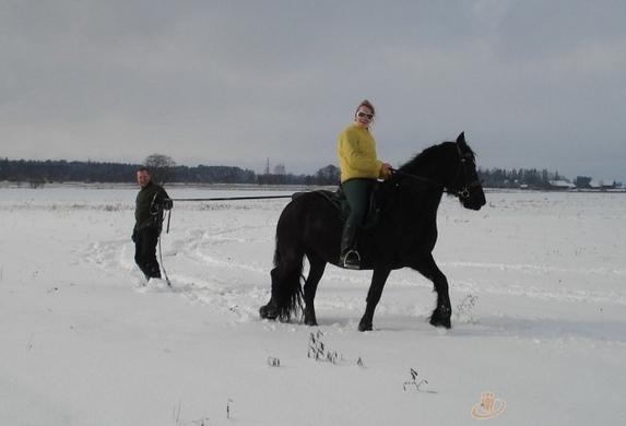 Izjādes ar zirgiem Ventspils novada viesu nami un kempinga Ventaskrasti - 7
