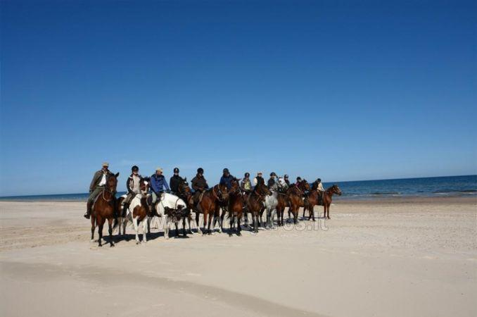 Horse riding in Ventspils region in camping Mikelbaka