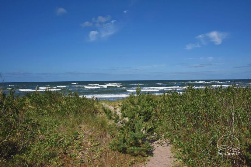Māja pārdošanai Pape, Latvija ar 0,5 hektāru zemes gabalu pie jūras - 18