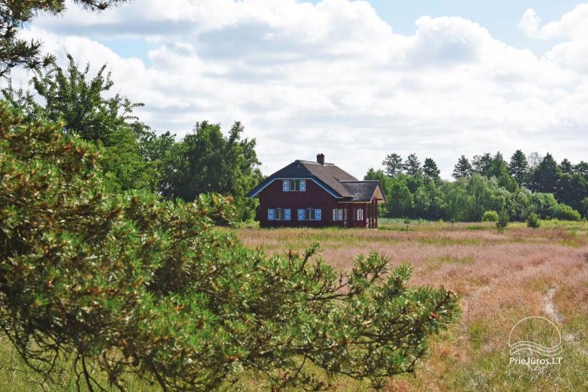 Māja pārdošanai Pape, Latvija ar 0,5 hektāru zemes gabalu pie jūras - 7