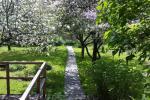 Garden cottage - 10