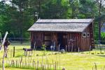 Camping cabins - 2